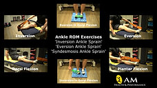 Ankle ROM Exercises Multi-View
