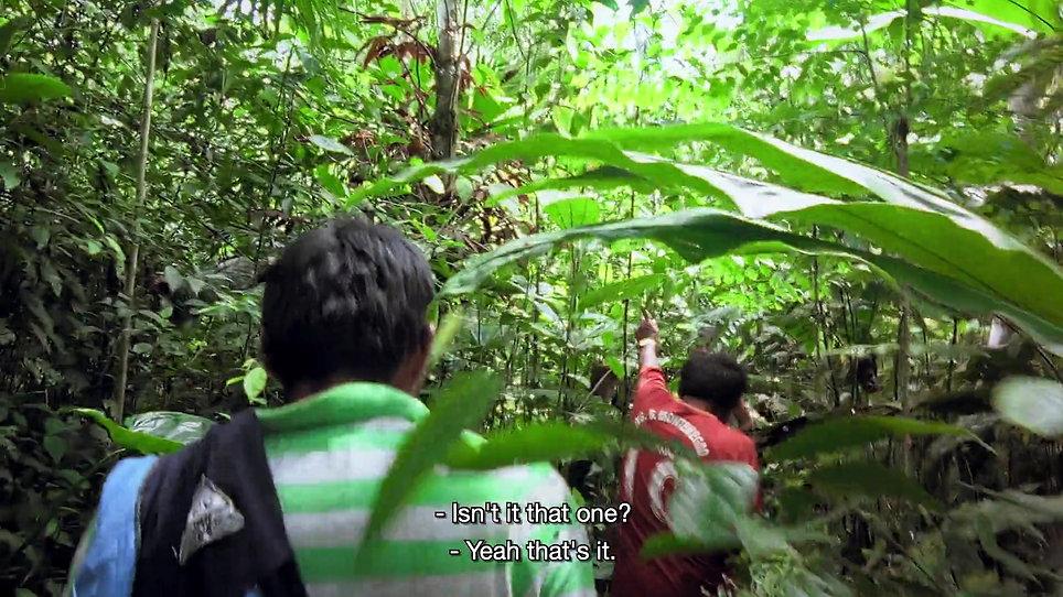 Kanarta_ Alive in Dreams (Official Trailer 2020 Full HD)