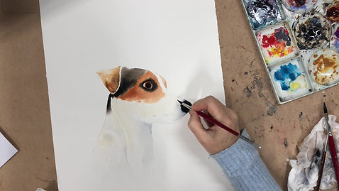 Jack Russell Lesson
