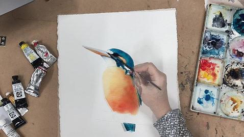 Kingfisher Lesson