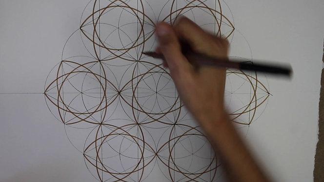 Six Fold Spherical Pattern