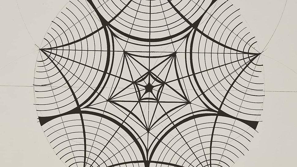 Geometry Of Seastars