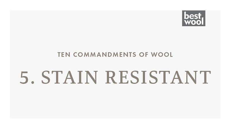 5. Stain Resistant - Best Wool