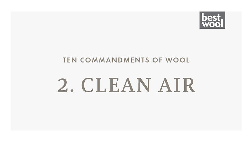 2. Clean Air - Best Wool