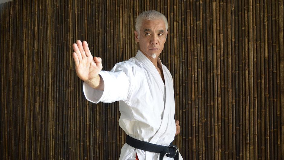 Jinsendo Karate Videos