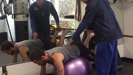 Reverse Hip Extensions
