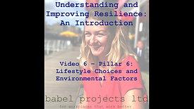 Pillar 6: Lifestyle Choices and Environmental Factors