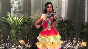 Violinist Player