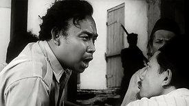 Pagar Kawat Berduri   1961