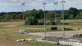 Chelmsford Racecourse Gallop 18/08/2020