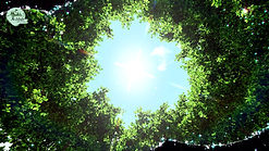 Earth Spirit Coven Oath