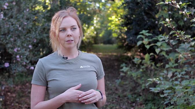Hannah Van de Werff, Town Planner