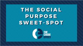 Social Purpose Sweet Spot