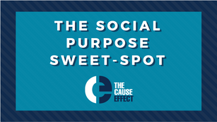 Social Purpose Sweet Spot