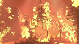 The Burn - 2021 Earth & Environmental Science Medalist, Monica Turner