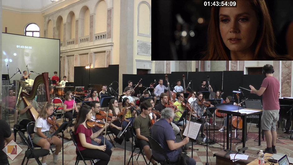 Video Orchestra
