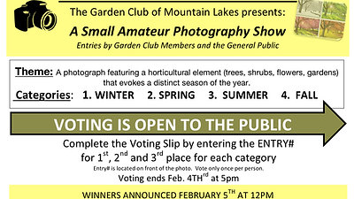 2020 Photo Show Winners