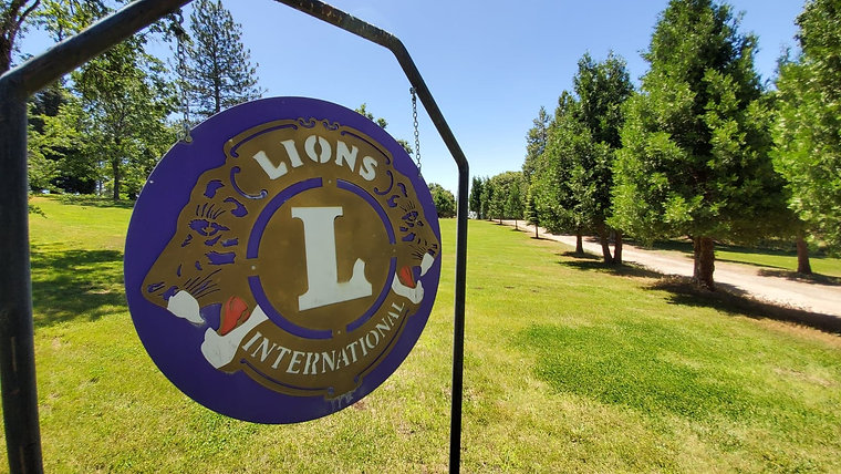 Yosemite CP Lions