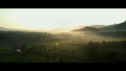 Misty Sunrise Scenery in Paddy Fields
