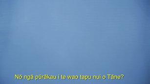 NŌ HEA TOKU REO? (TRAILER)