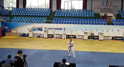 Maestro Park 9º DAN Taekwondo