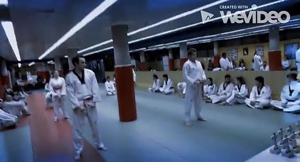 Escuela de Taekwondo Park Madrid