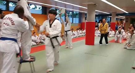 Maestro Chan mo Park rompimiento