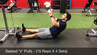 back - seated v pull