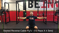 shoulders - reverse cable fly's