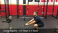 legs- cable squats