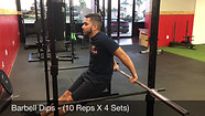 triceps - barbell dips